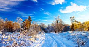 Дифференциация звуков [С] — [З] на лексическом материале «Зима»